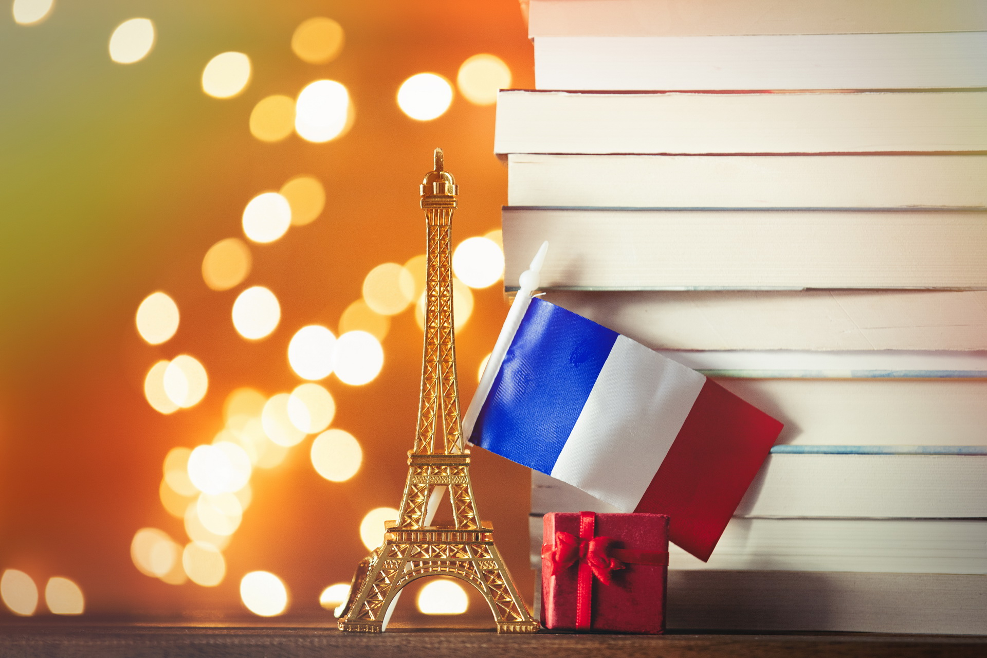 French Language Courses for Adults